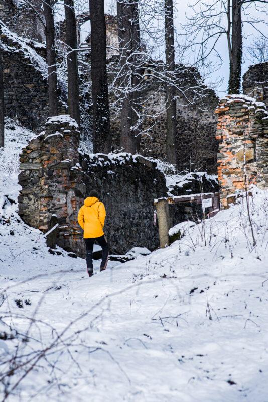 Ruiny zamku Gryf w Proszówce